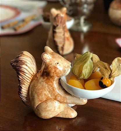 Petisqueira de Esquilo