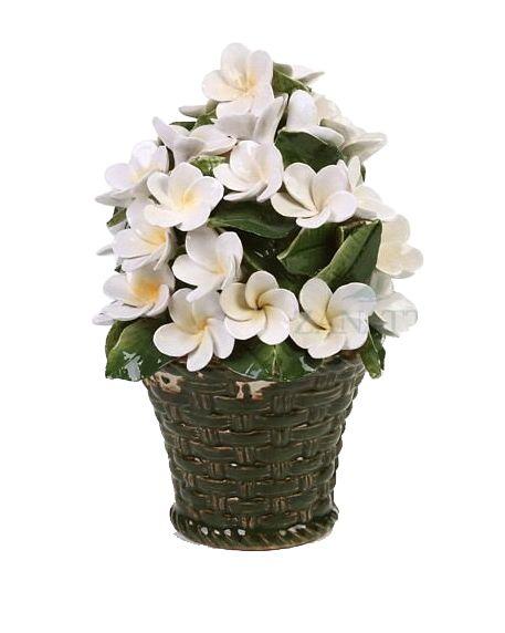 Vasinho Flores brancas zanatta casa