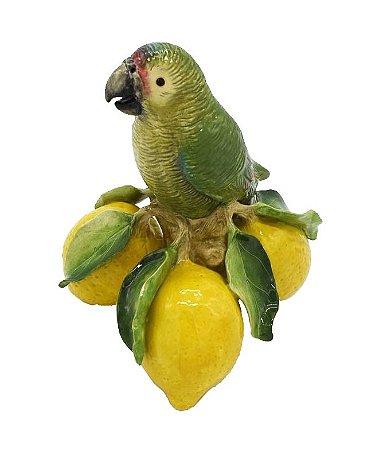 Enfeite cerâmica papagaio com limões sicilianos Zanatta Casa