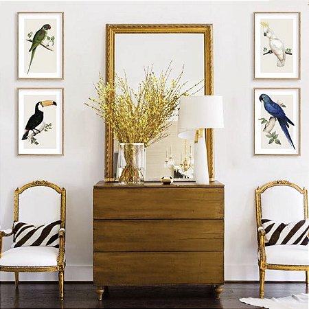 Conjunto 4 quadros pássaros Doris