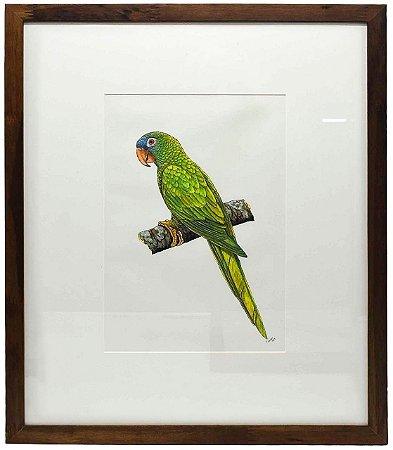 Quadro de Pássaro 2