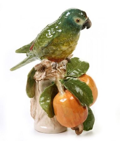 Papagaio no Tronco Caju