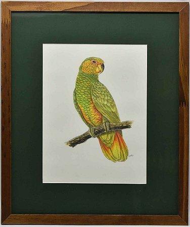 Quadro de pássaro 6 com passpatour verde Zanatta Casa
