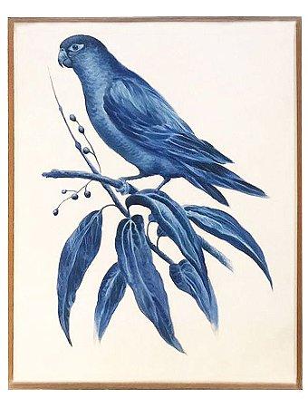 Quadro a óleo pássaro azul 1 Zanatta Casa