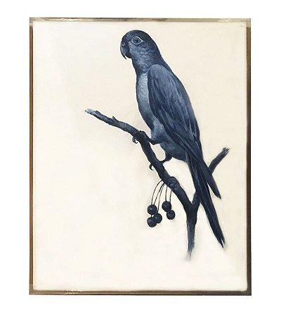 Quadro a óleo pássaro azul 2 Zanatta Casa
