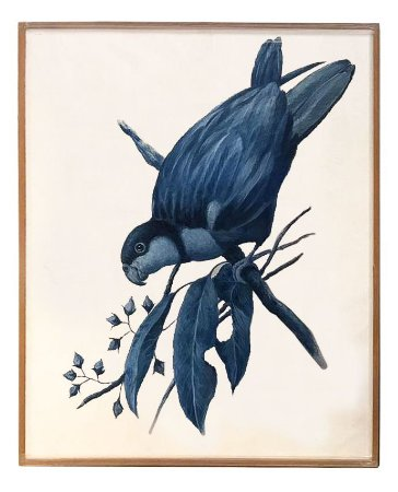 Quadro a óleo pássaro azul 4 Zanatta Casa