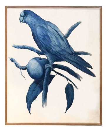 Quadro a óleo pássaro azul 6 Zanatta Casa