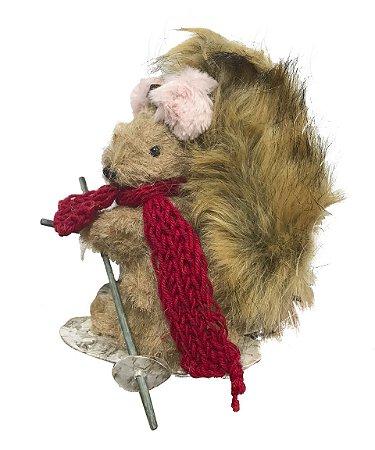 Esquilo com cachecol