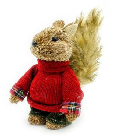 Esquilo de Natal com tricô vermelho