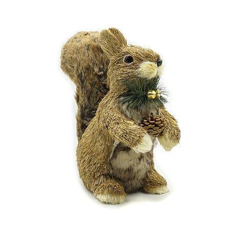 Esquilo em Pé com pinha