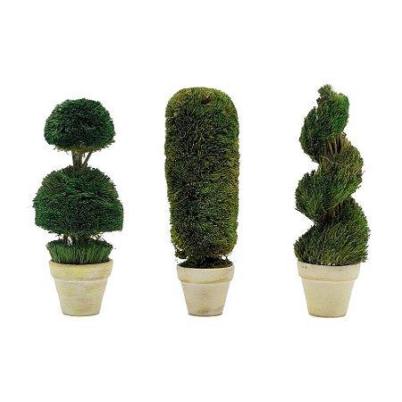 Trio de mini topiarias