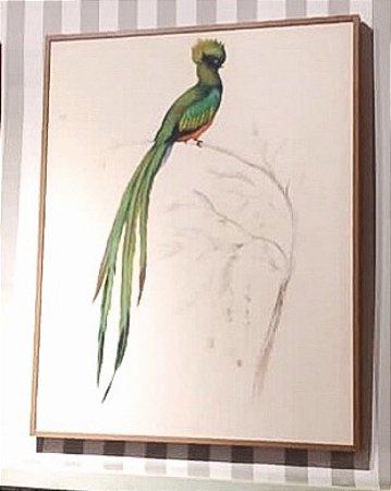 Quadro pintura a óleo pássaro cauda longa verde
