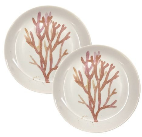 Duo prato raso coral exclusivo Kasa 57