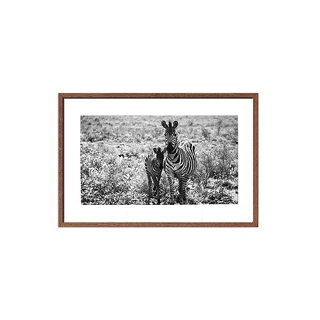 Quadro foto zebras preto e branco