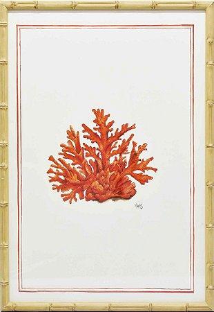 Gravura coral moldura faux bamboo 1