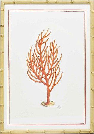 Gravura coral moldura faux bamboo 4