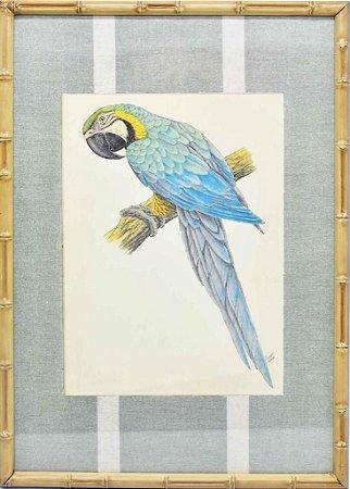Quadro gravura pássaro com moldura de faux bamboo fundo listra 2