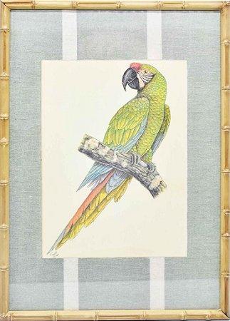 Quadro gravura pássaro com moldura de faux bamboo fundo listra 3