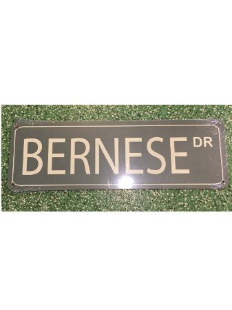 Placa Drive Bernese