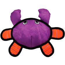 Kong Roughskinz Crab
