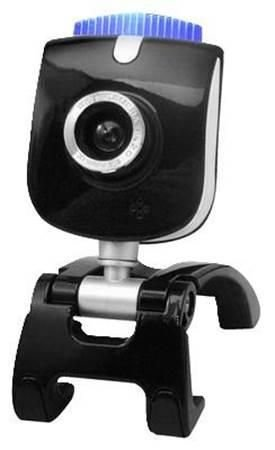 Webcam Dr Hank Livecam V155