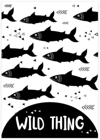 POSTER WILD THING