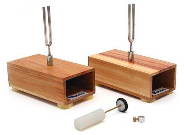 Kit de Física - Conjunto de Diapasões (Par)
