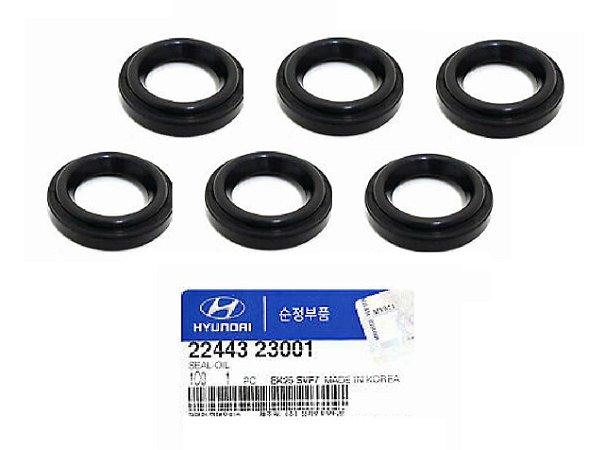 Kit Com 06 Anéis de Vedação Da Vela Original Hyundai I30 2.0 Tucson 2.0 Santa Fé 2.7 2244323001
