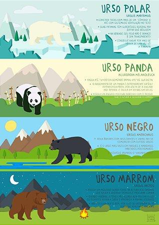 Tipos de Ursos