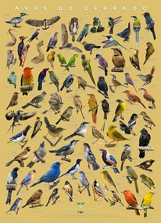 Pôster Aves do Cerrado