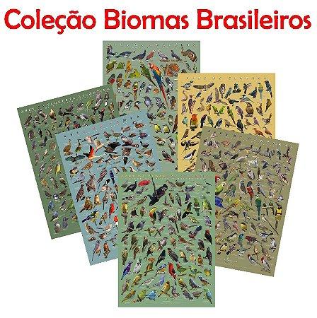 PÔSTER COLEÇÃO BIOMAS BRASILEIROS - PROMOÇÃO TRÊS UNIDADES