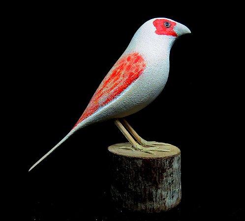 Miniatura madeira Canário-Belga