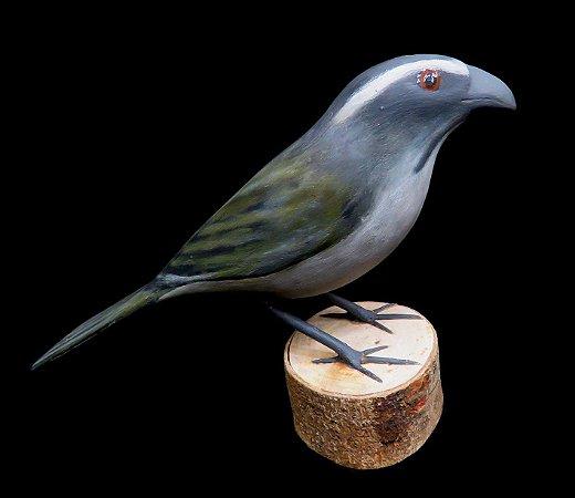 Miniatura madeira Trinca-Ferro