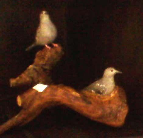Miniatura madeira casal de Fogo-Apagou na raiz