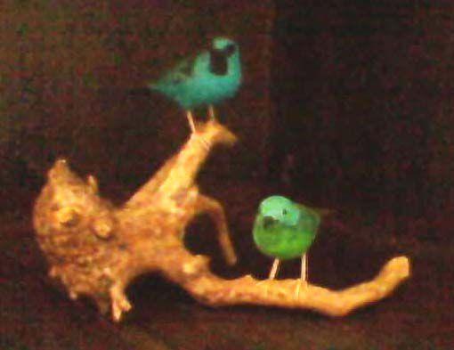 Miniatura madeira casal de Saí-Azul na raiz