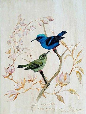 Tela Saíra-beija-flor