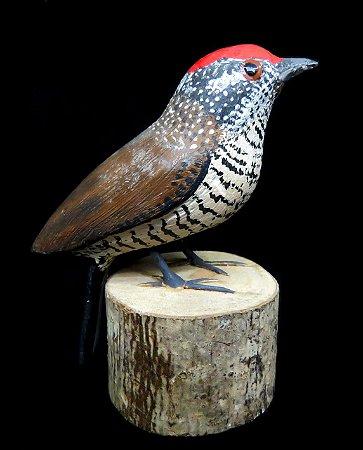 Miniatura madeira Pica-Pau-Anão-Barrado