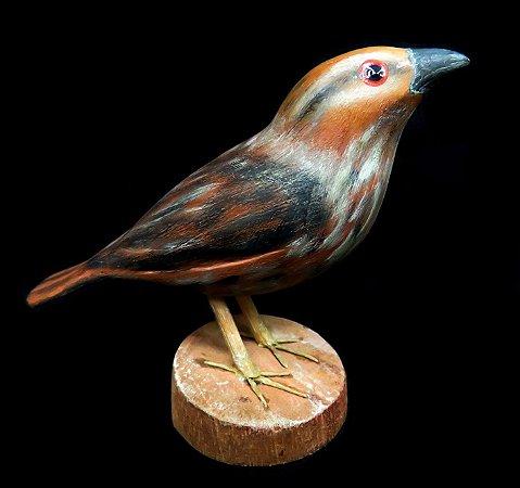 Miniatura madeira ave 4