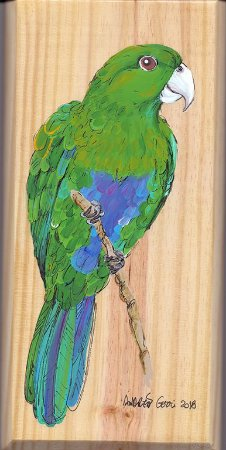 Arte em Madeira - Sabiá-cica