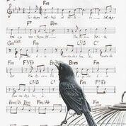 Reprodução Fine Art - Pássaro-preto