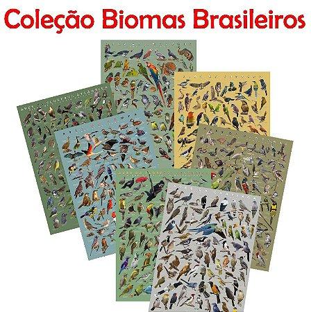 PÔSTER COLEÇÃO BIOMAS BRASILEIROS - PROMOÇÃO COLEÇÃO COMPLETA