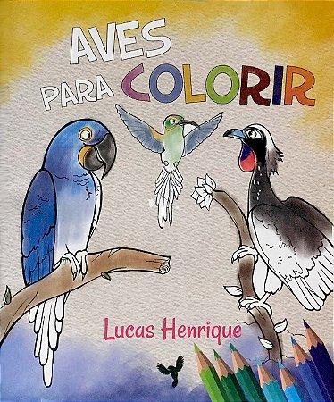 Aves para Colorir