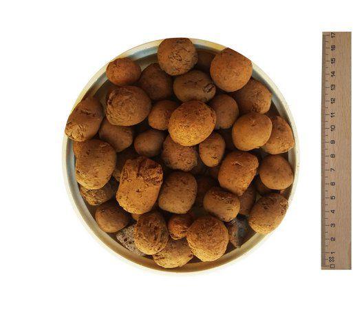 Argila Expandida (5 kg)