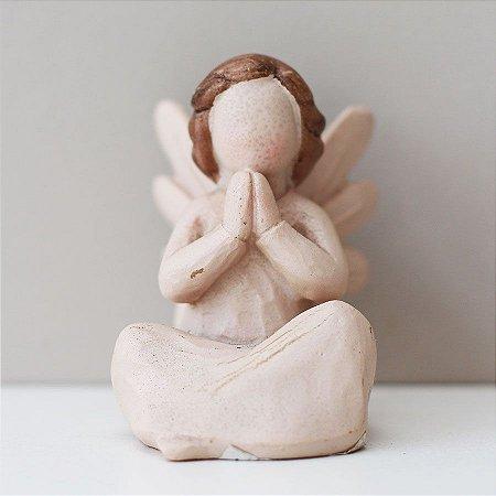 Anjo Delicado Pequeno
