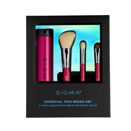Essential Trio Brush Kit
