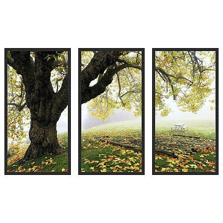 Quadro Decorativo Triplo Com Moldura Paisagem Outono Folhas no Parque - Art
