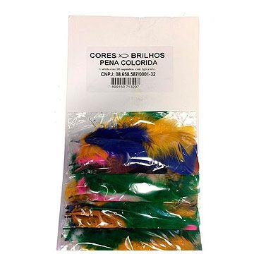 Pena colorida (pct c/ 6 penas) - Cores e Brilhos