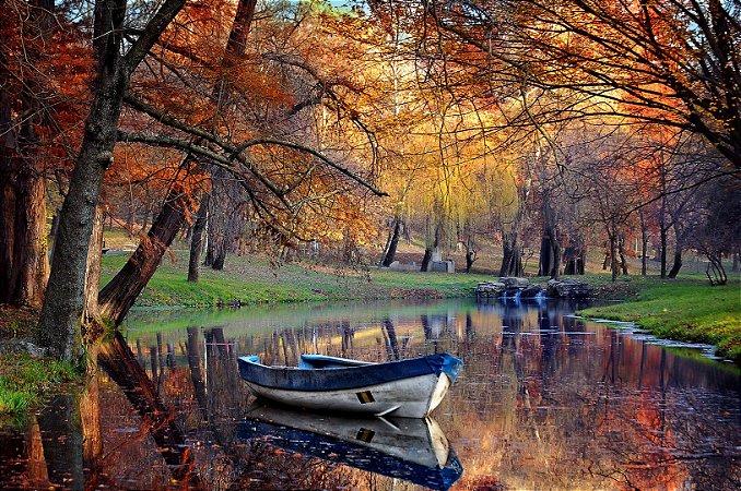 """Painel Fotográfico """"Outono"""""""