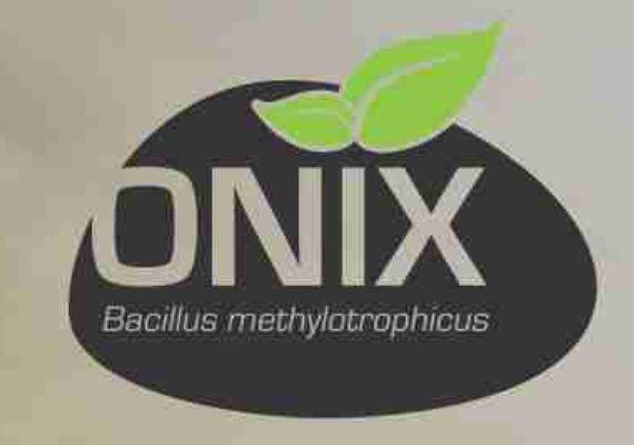 Ônix SC 1 litro