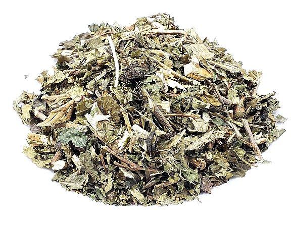 Amora Branca Folhas (Chá) - Rei das Castanhas